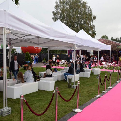 Festiwal Muzyki Tanecznej, strefa VIP
