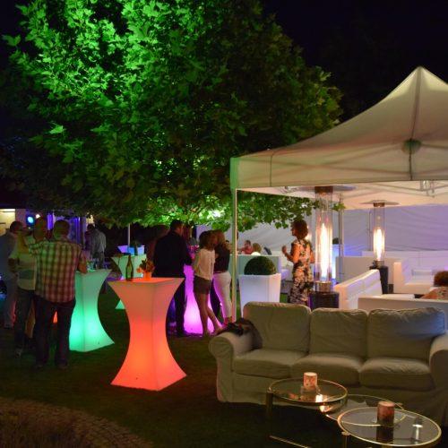Przyjęcie urodzinowe w ogrodzie, Piaseczno
