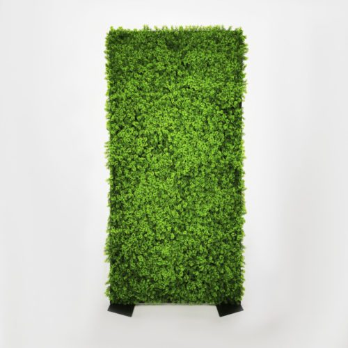 GREEN WALL – MOSSY